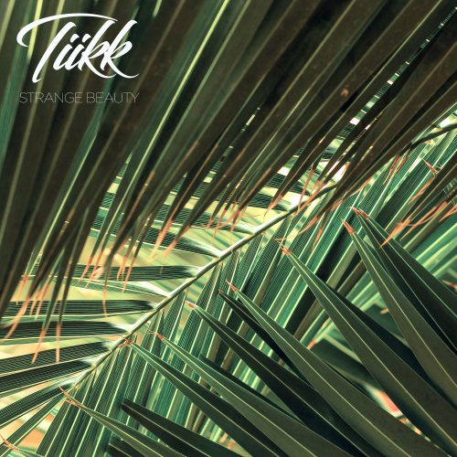 Tiikk - Strange Beauty